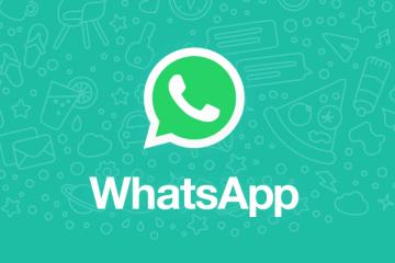 WhatsApp个人版&商务版下载