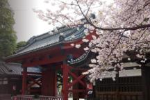如何选择日本留学意向教授?
